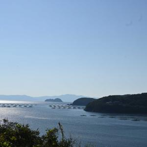 海と石垣と紫電改(愛媛県愛南町)
