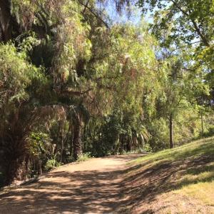 サンペドロのPeck Park Loop Trailへ