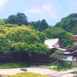 別格本山千如寺大悲王院(福岡県糸島市)