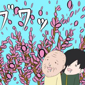 介護施設における吹雪は桜だけとは限りません。
