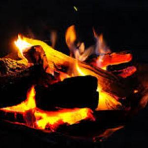 耐熱グローブ キャンプ