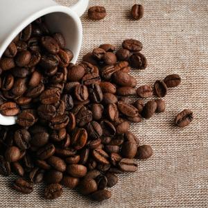 コーヒー 豆 高級