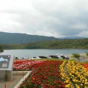 西湖湖畔キャンプ場 @山梨県富士河口湖町