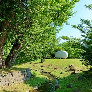 不思議の石の風景