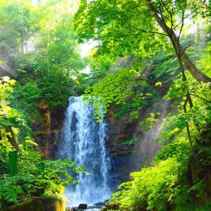 太めの白糸の滝