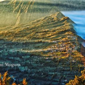 インドネシア9日旅〜その7〜ブロモ山