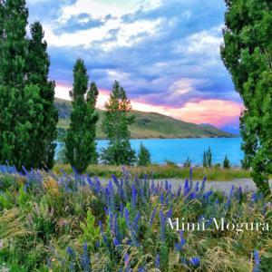 ニュージーランド11日旅〜その12〜絶景すぎるレンタカー旅/テカポ湖編