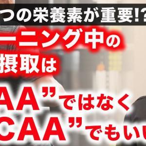 【Youtube紹介】【筋肥大】トレーニング中の栄養摂取 / EAAではなくBCAAでもいい理由。