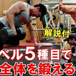 【Youtube紹介】【筋トレ】ダンベルとベンチで背中のトレーニング!5種目で広背筋や僧帽筋を鍛える【解説付】