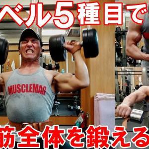 【Youtube紹介】【筋トレ】ダンベルとベンチで三角筋全体を鍛える5種目の肩のトレーニング【解説付】