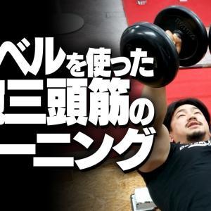 【Youtube紹介】ダンベルを使った上腕三頭筋を鍛えるトレーニング【SBDアスリート】鈴木佑輔