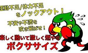 【Youtube紹介】【ボクササイズ】マンションOK!女性でも出来る!楽しくダイエット!!
