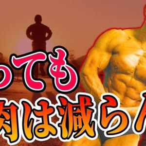 【Youtube紹介】絶対筋肉が落ちない!有酸素運動の取り入れ方!【日体大准教授が徹底解説】