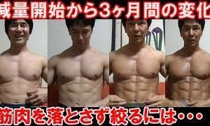 【Youtube紹介】【減量13週目】3ヶ月間の筋トレと食事内容&筋肉を残して体脂肪を落とす方法について