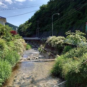 常陸太田市 横川温泉 巴屋鉱泉旅館に再訪。