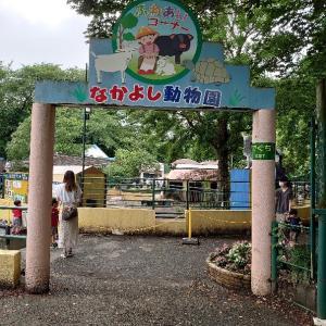 羽村市 羽村動物園に3回目の訪問 2 動物とランチ。