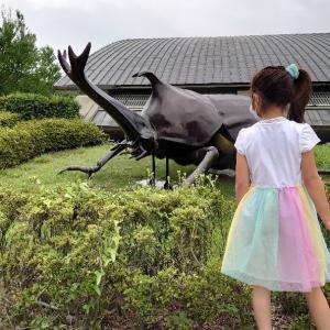 富岡市 群馬県立自然史博物館に3回目の訪問。