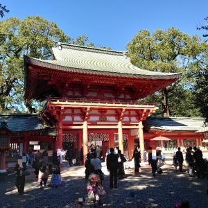 さいたま市 武蔵一宮氷川神社で七五三。
