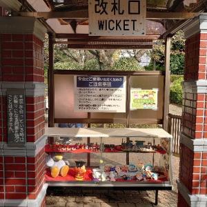 川口市 グリーンセンターに5回目の訪問 2 遊具で遊ぶ。