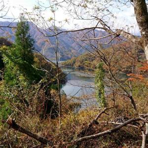 日本 馬坂峠からの徳山ダム