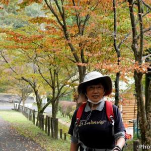 日本 文殊の森公園の秋模様