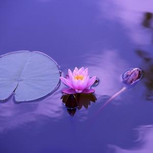望みが叶う直前に起こること 天界からのショック療法で願望達成へと導かれる