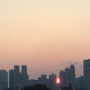 プログレスの太陽山羊座10度体験 振り返り 精神的自立の予兆と、エリート意識