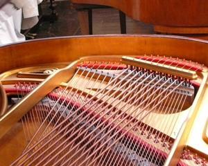 芸術の秋スペシャルキャンペーン! あなたのピアノ練習が足りないのではなく、◎◎の質を上げる原理を知らないだけなのです