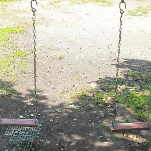 習い事:体操教室 幼児期が将来の運動神経を決める!?