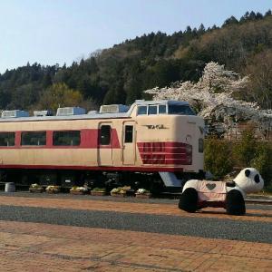 鉄道文化むらで国鉄時代車両と戯れました