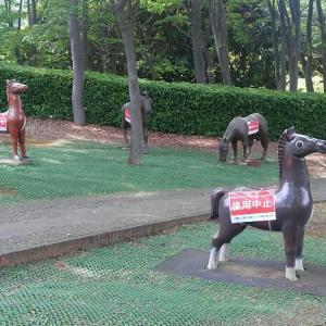 根岸森林公園は馬と自然と接収地がいっぱい