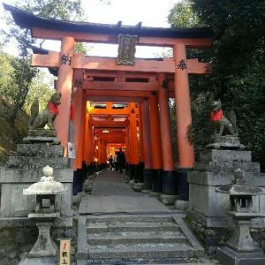 京都「伏見稲荷大社」の見どころは朱色の千本鳥居に囲まれた稲荷山プチ登山