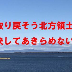 日露平和条約