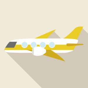 [株式分析]ベトジェットエアはベトナム国内シェア1位の航空会社!購入検討中('ω')