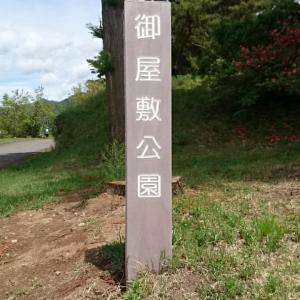 御屋敷公園(真田氏館跡)のツツジ
