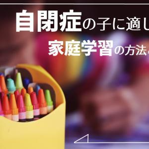 【コロナ対策】視覚優位の自閉症の子に適した家庭学習方法【オンライン学習】