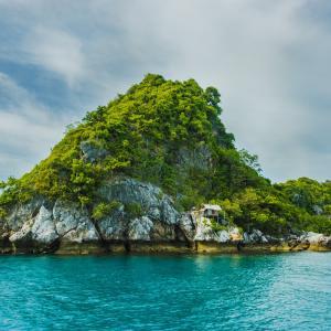 【アクセス0当たり前】WordPressは陸の孤島を経験して思う事