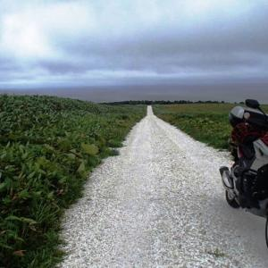 稚内観光情報「白い道」