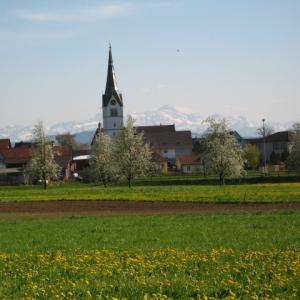 行動制限措置の緩和決定(スイス)