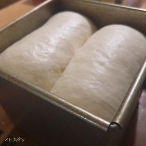 失敗、正角パン