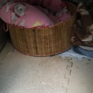 犬(猫)小屋の中は冬仕様