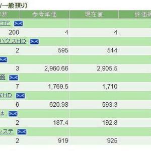 2018/10/31の保有日本株式(SBI証券分)