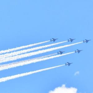 in the sky : BLUE IMPULSE for THEM.