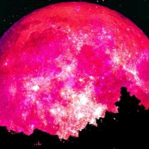 「恋を叶えてくれる月」がやってきた