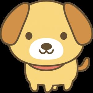 【動画】ぴょこぴょこお耳のクロワッサン犬