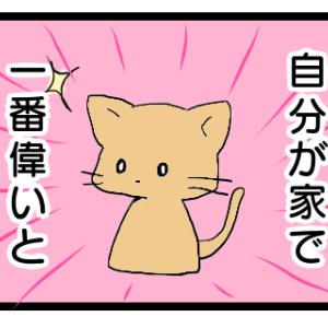 【絵】ネコは自分が家で一番偉いと思ってる