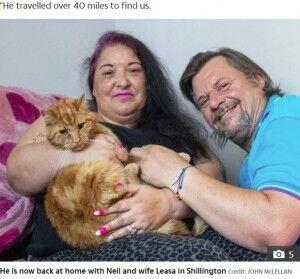 【英】元の飼い主に「どうしても会いたい」64キロを6週間かけて旅した猫