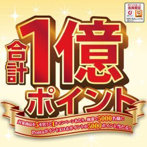 ローソン「1億円キャンペーン」抽選で5,000名に5,000ポイント!