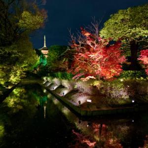 瓢箪池に映る逆さ五重塔が美しすぎる京都で一番オススメの紅葉ライトアップ・東寺の夜間拝観