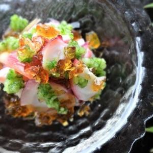 タコとミョウガの柚子ジュレ